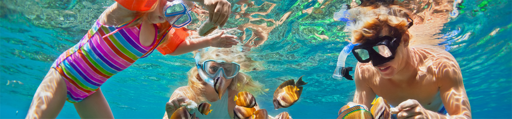 Grenadines Snorkeling