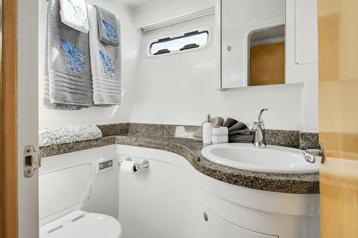 Blue Gryphon Guest Bathroom
