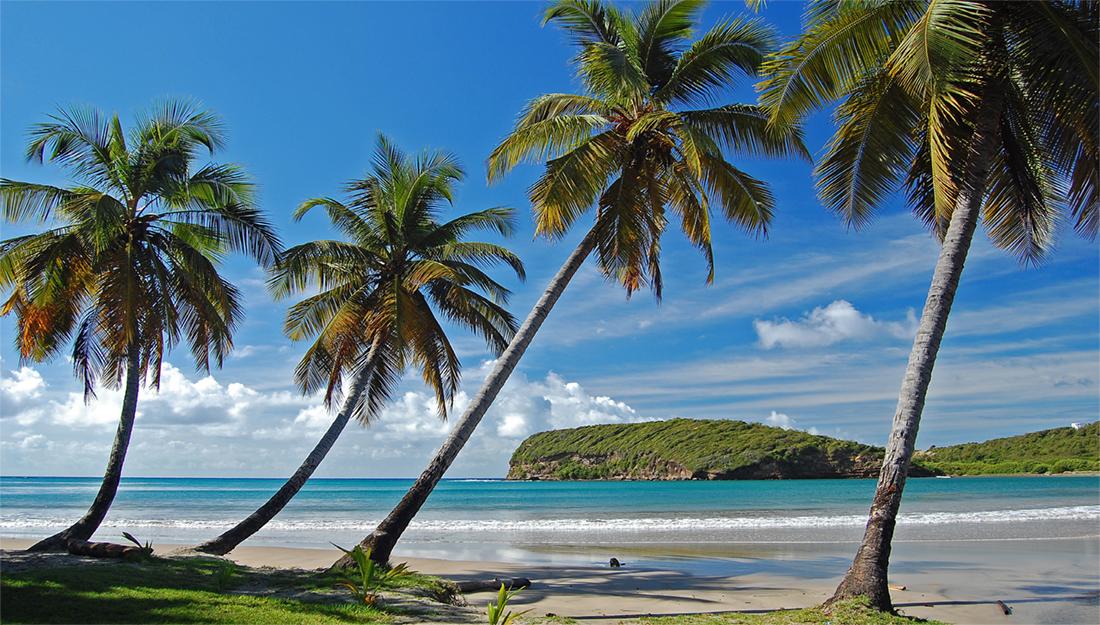 Caribbean landscape main image
