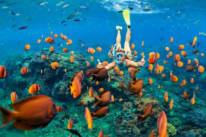 Exuma snorkeling