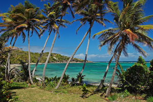 Grenadines small image