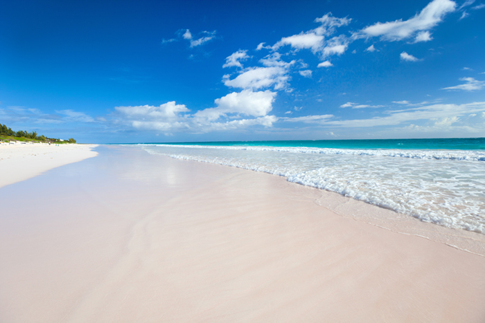 Pink beaches to explore on Harbour Island yacht charters