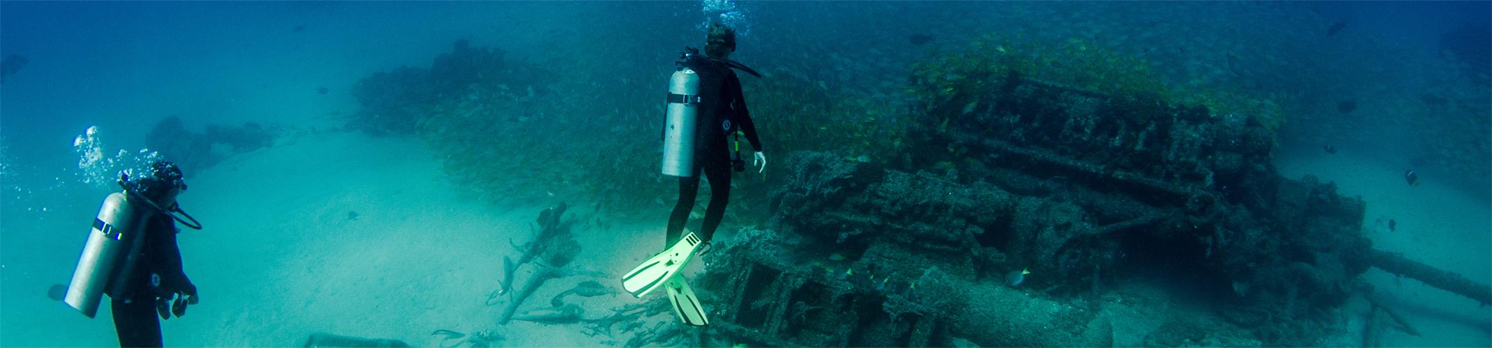 Best Diving in the Leeward Islands