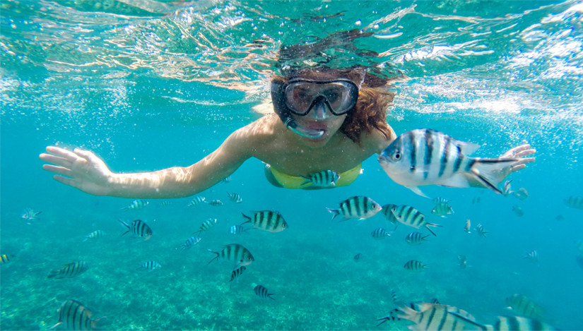 Snorkeling at Norman Island
