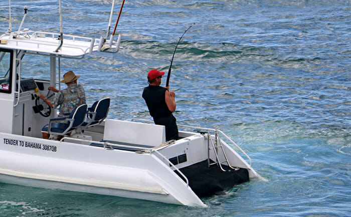 Bahama tender fishing
