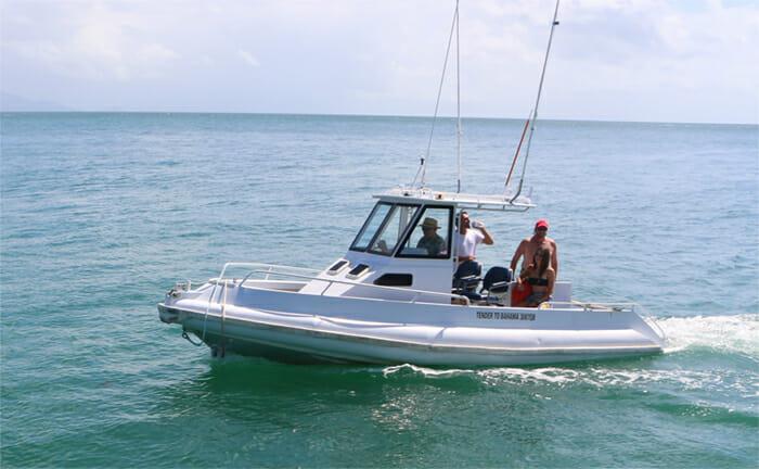 Bahama tender