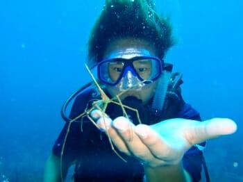 Braveheart scuba diving