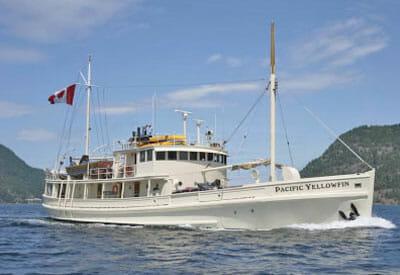 Pacific Yellowfin profile