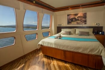 Majestic guest stateroom