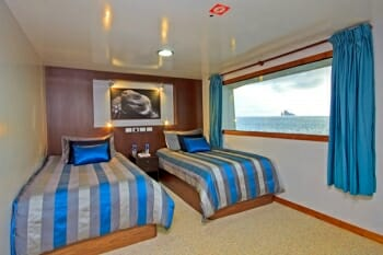 Ocean Spray twin stateroom