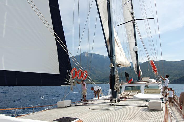 Papa Joe sail
