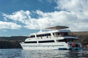 Sea Star Journey profile