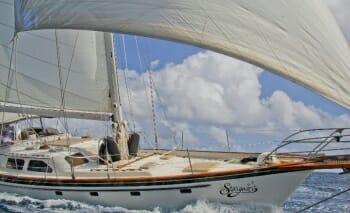 Stargazer sailing