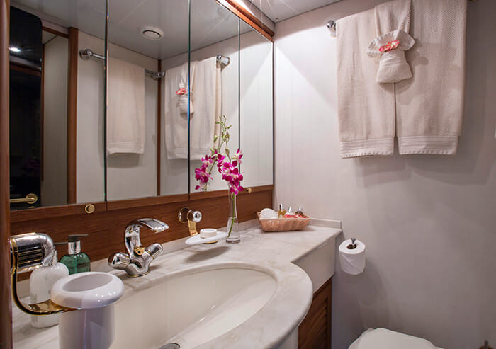 Takapuna master bathroom