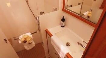 Tell Star guest bathroom