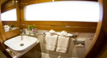 Xenia guest bathroom