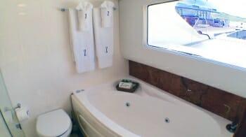 Zingara master bathroom